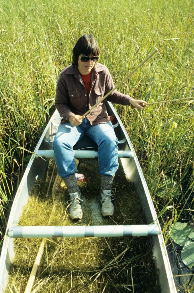 Harvesting Wild Rice Curb 2014